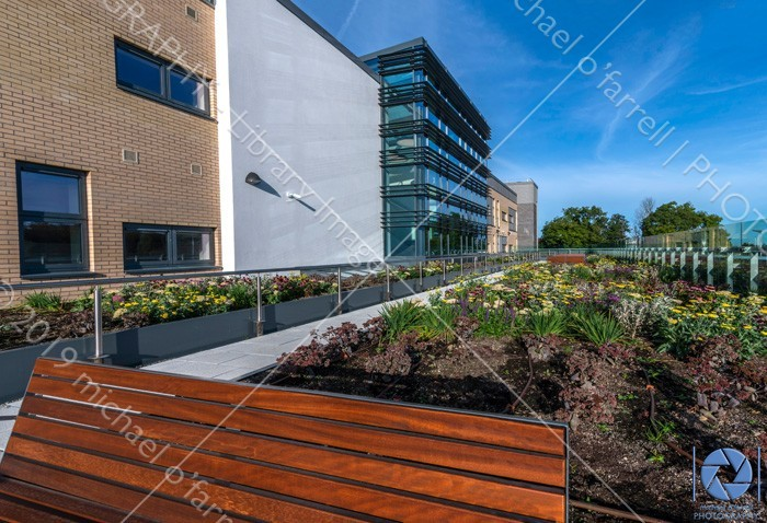 New Healthcare Facility at Tymon North  building exterior,central nursing unit at tymon north tallaght,dublin,london,modern healthcare facility in tallaght,places,tallaght medical centre,tymon north nursing unit,